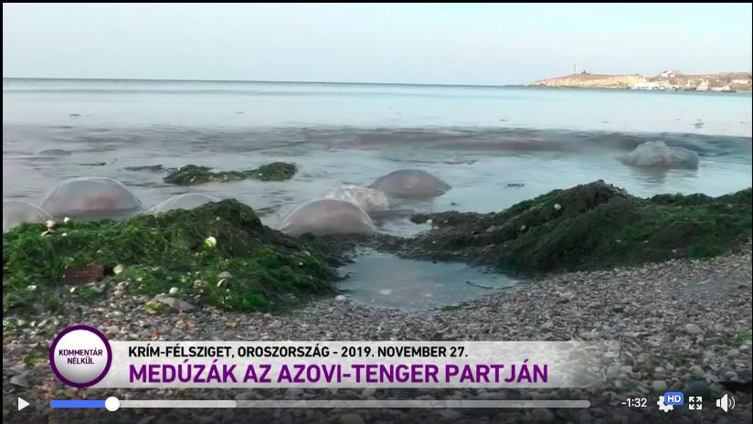 Українські дипломати вимагають від угорського телеканалу виправити помилку з Кримом, фото-1