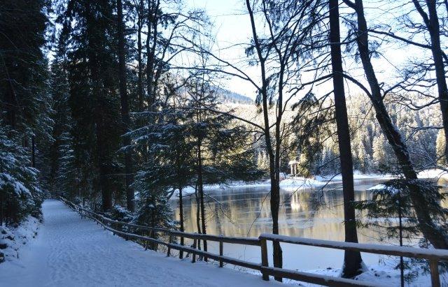 Неймовірний пейзаж: як виглядає озеро Синевир взимку | Новини