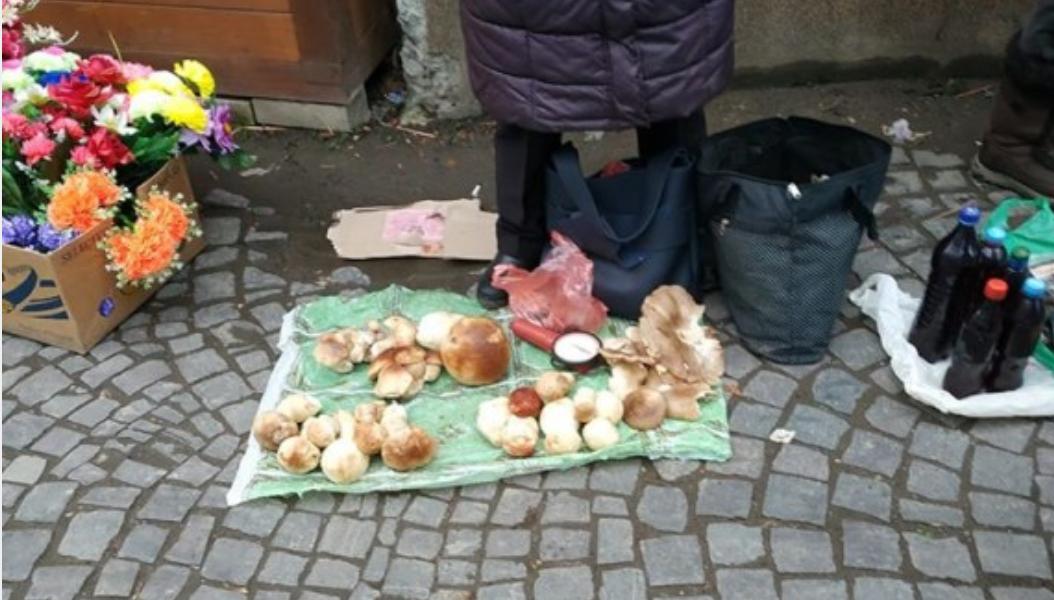 На календарі зима однак закарпатці продовжують збирати та продавати гриби (ФОТО), фото-2