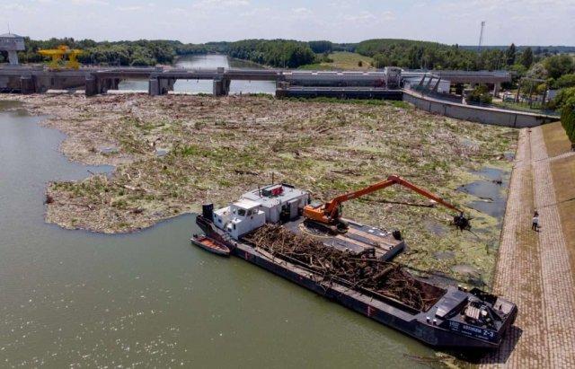 Людям має бути соромно: сусіди Закарпаття зібрали з Тиси 10 тис тонн сміття (ФОТО), фото-4