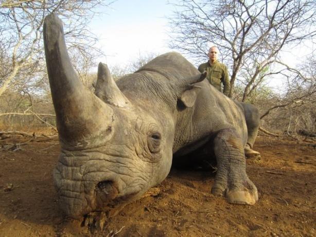 Мережу вразили фото Шуфрича із сафарі на рідкісних тварин в Африці , фото-1