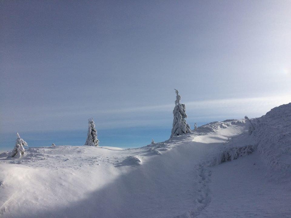 Фото дня: неймовірна зимова казка на Боржаві, фото-4