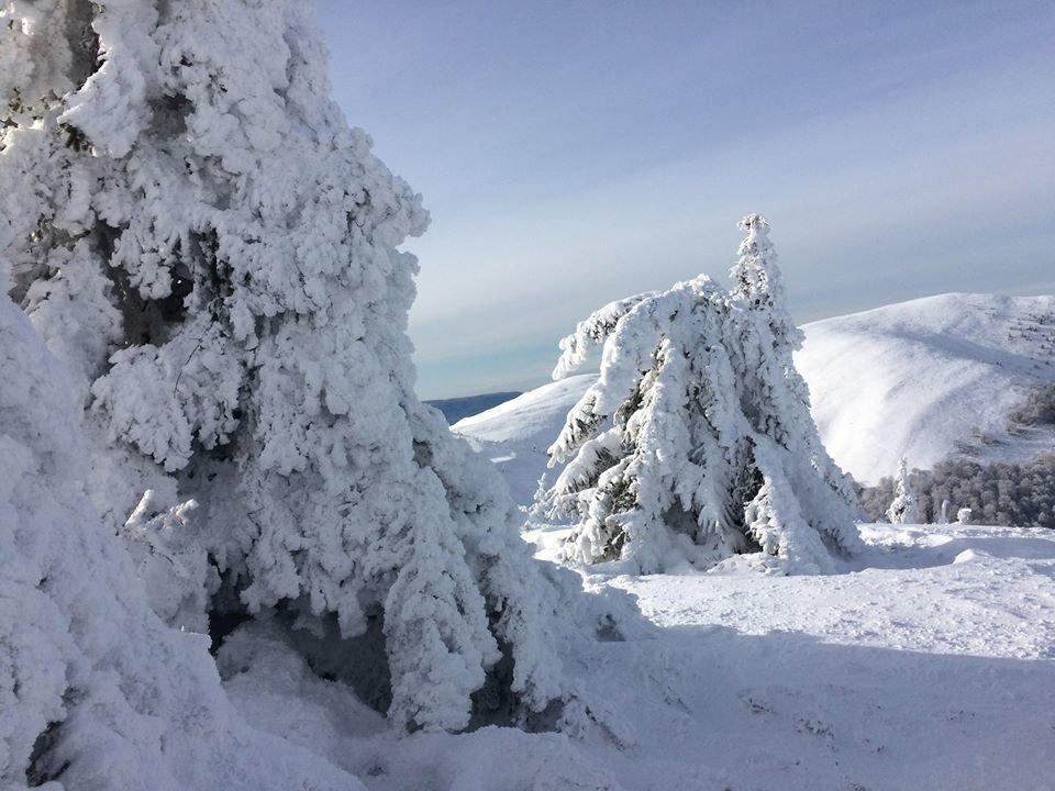 Фото дня: неймовірна зимова казка на Боржаві, фото-2