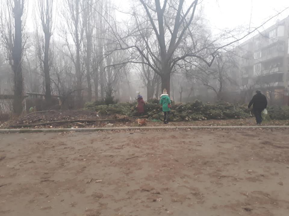 На вулицях Ужгорода з'явилися смітники з непроданих ялинок (ФОТОФАКТ), фото-2