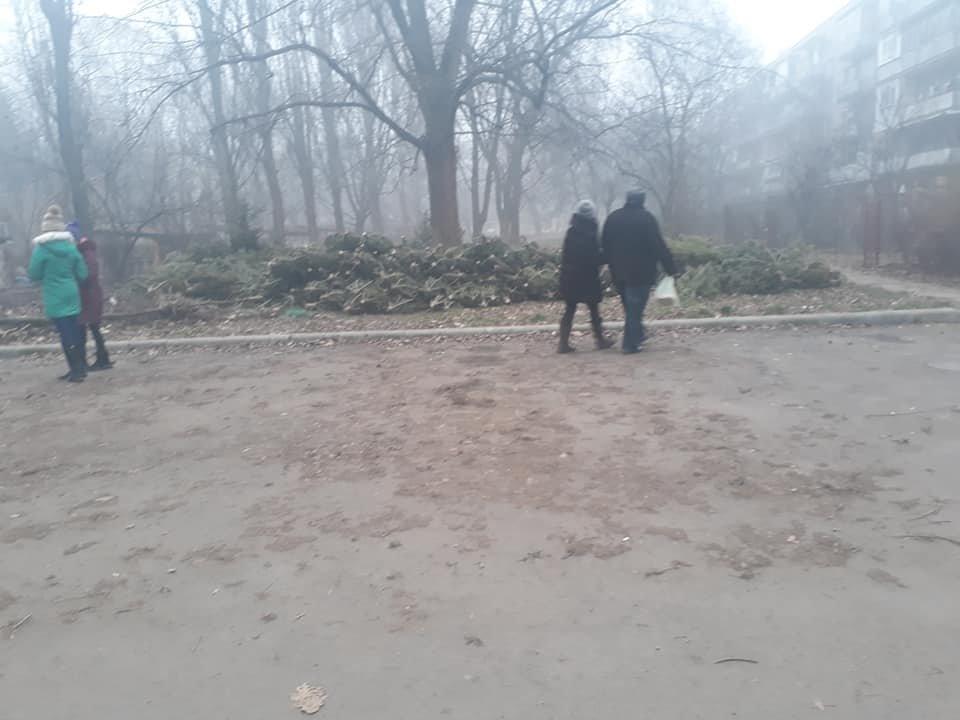 На вулицях Ужгорода з'явилися смітники з непроданих ялинок (ФОТОФАКТ), фото-6