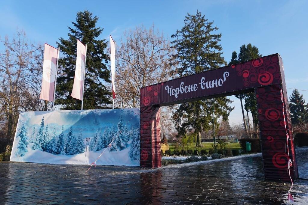 """Готові до урочистого відкриття та гостей: у Мукачеві стартував фестиваль """"Червене вино 2020"""" (ФОТО), фото-1"""