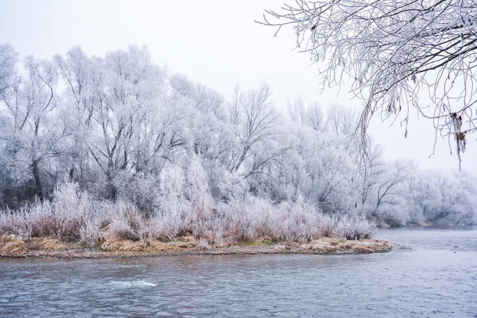 """Фото дня: як виглядає Ужгород у """"сріблі"""", фото-9"""