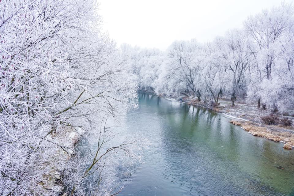 """Фото дня: як виглядає Ужгород у """"сріблі"""", фото-6"""