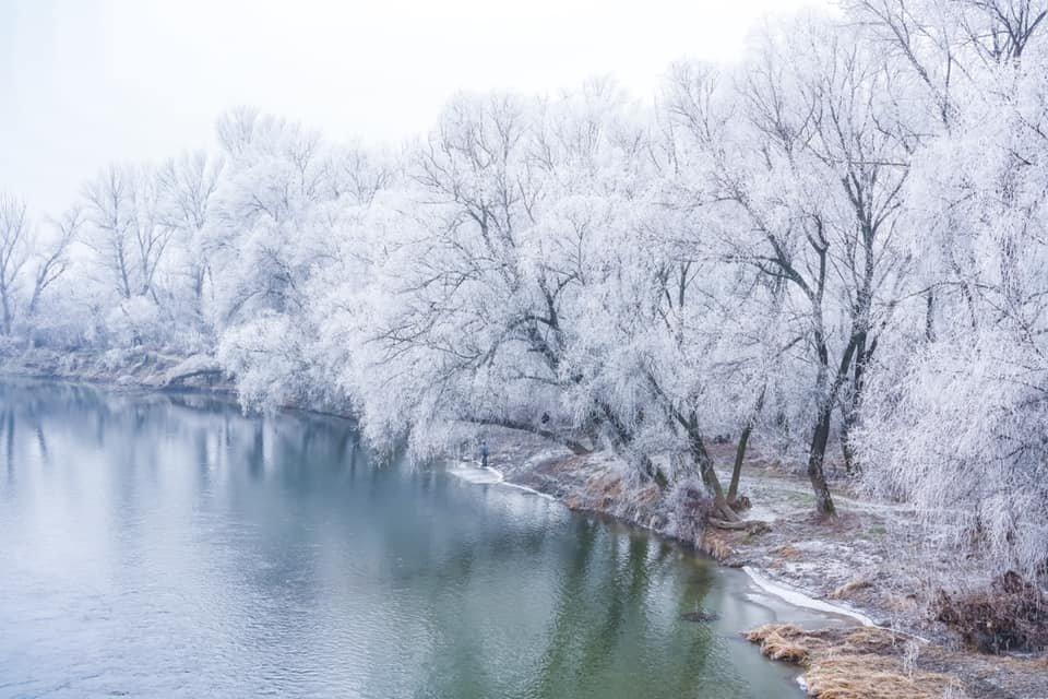 """Фото дня: як виглядає Ужгород у """"сріблі"""", фото-5"""