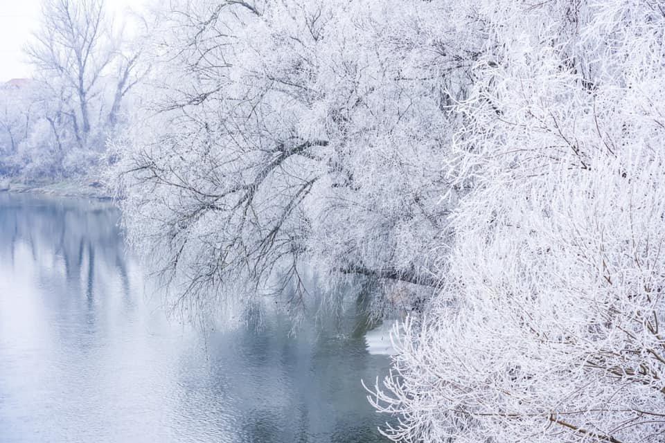 """Фото дня: як виглядає Ужгород у """"сріблі"""", фото-10"""