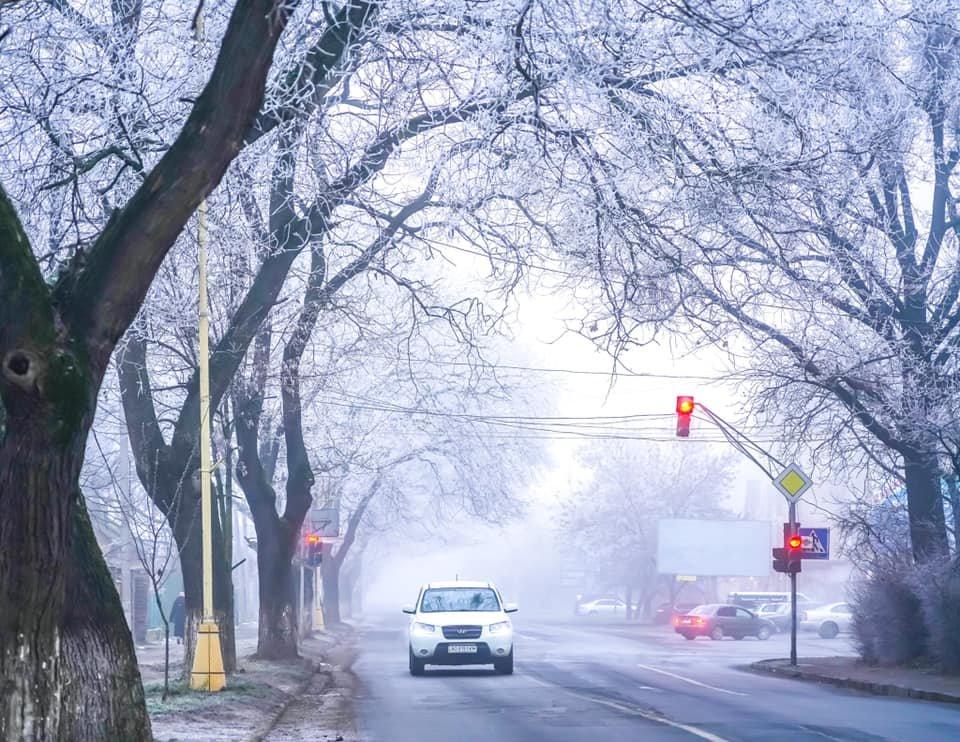 """Фото дня: як виглядає Ужгород у """"сріблі"""", фото-11"""