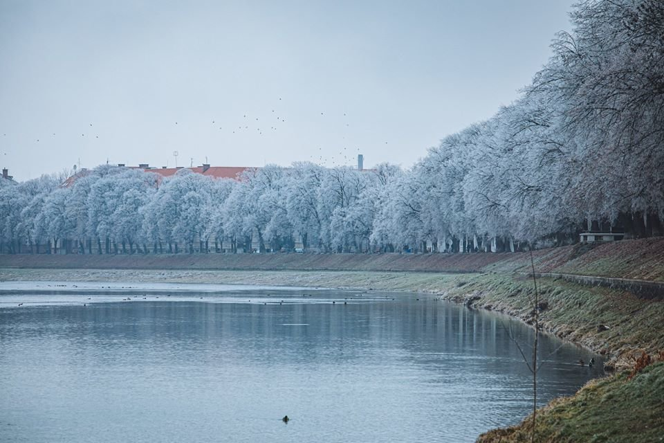 """Фото дня: як виглядає Ужгород у """"сріблі"""", фото-4"""