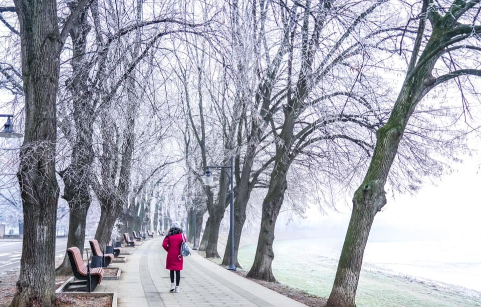 """Фото дня: як виглядає Ужгород у """"сріблі"""", фото-12"""