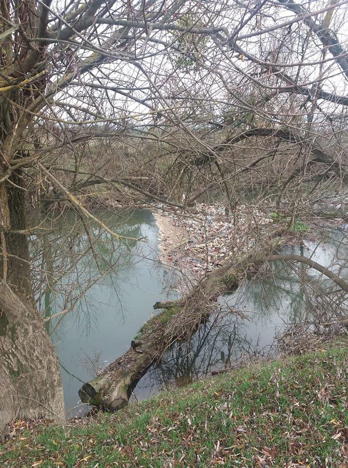 """Життя у смітті: на закарпатських річках утворюються чималі пластикові """"острови"""" (ФОТО), фото-3"""
