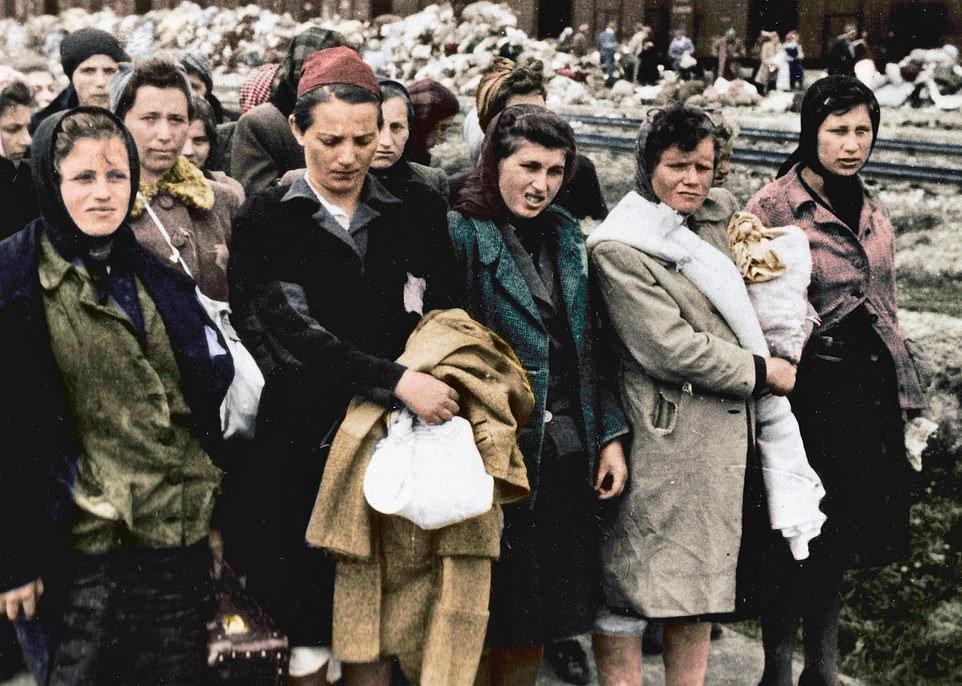 Фотоальбом із пекла: рідкісні знімки з Освенцима зберегла його колишня ув'язнена з Закарпаття (ФОТО), фото-5