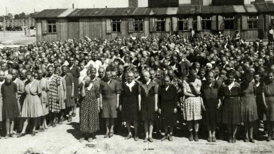 Фотоальбом із пекла: рідкісні знімки з Освенцима зберегла його колишня ув'язнена з Закарпаття (ФОТО), фото-4