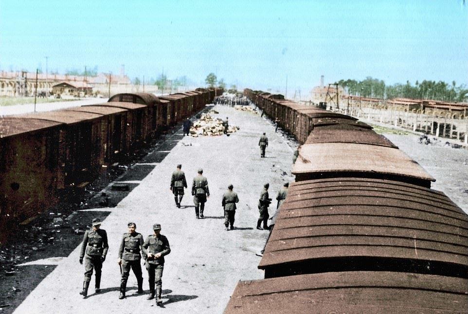 Фотоальбом із пекла: рідкісні знімки з Освенцима зберегла його колишня ув'язнена з Закарпаття (ФОТО), фото-1