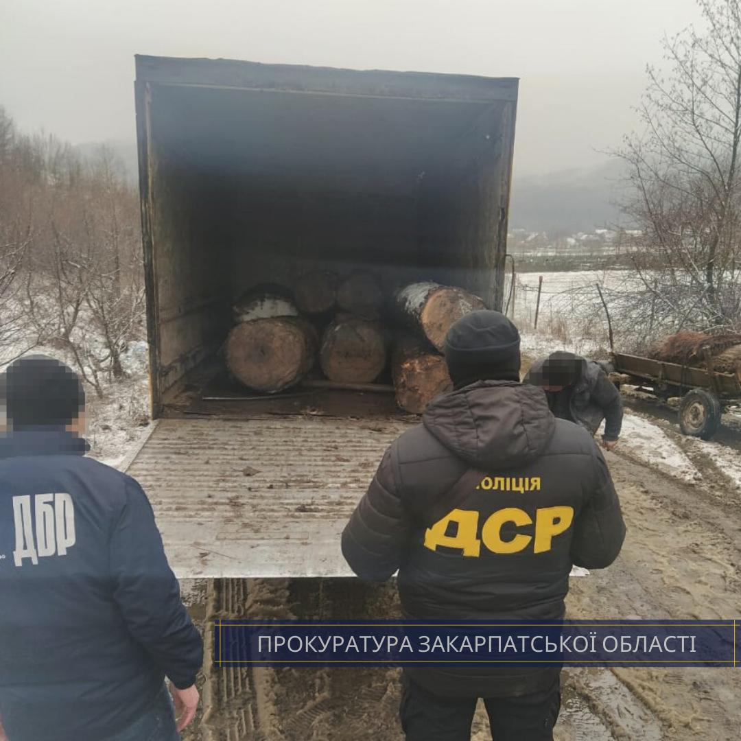 $3 тис за надання дозволу на вирубку дубу: прокуратура Закарпаття викрила лісівника-хабарника (ФОТО), фото-2