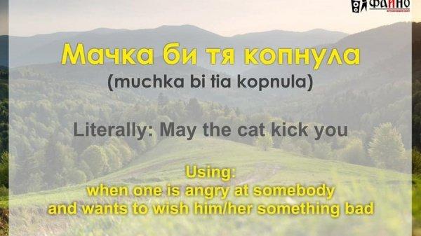 May the cat kick you: місцеві гумористи створили добірку закарпатських фраз англійською (ФОТО), фото-4