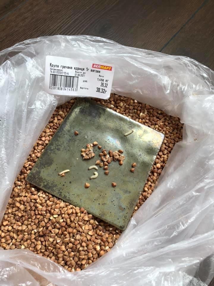 В одному із супермаркетів Ужгорода продають гречку з... личинками (ФОТОФАКТ), фото-1