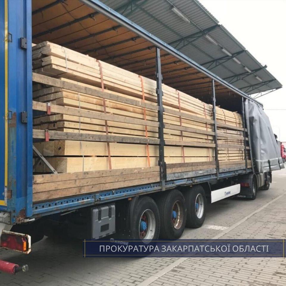 Незаконний експорт: викрито схему контрабандного вивезення закарпатської деревини за кордон (ФОТО), фото-2