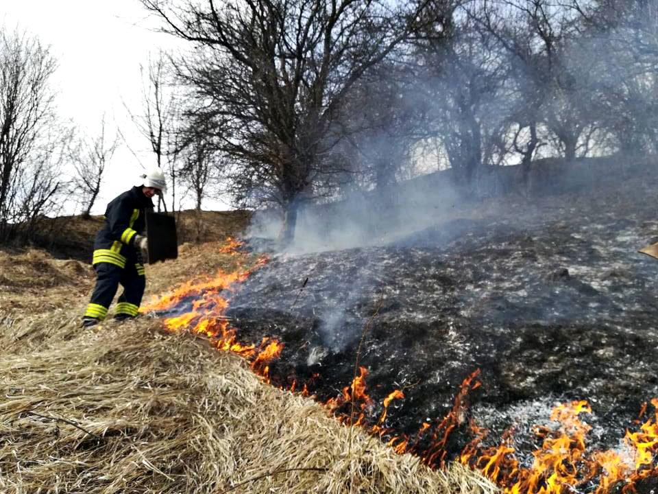 Знову за старе: на Закарпатті не вщухають пожежі в екосистемах (ФОТО), фото-2