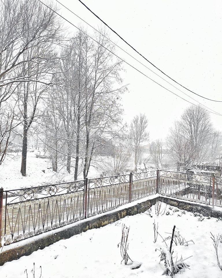 Зима не відпускає: на Рахівщині падає сніг (ФОТО), фото-1