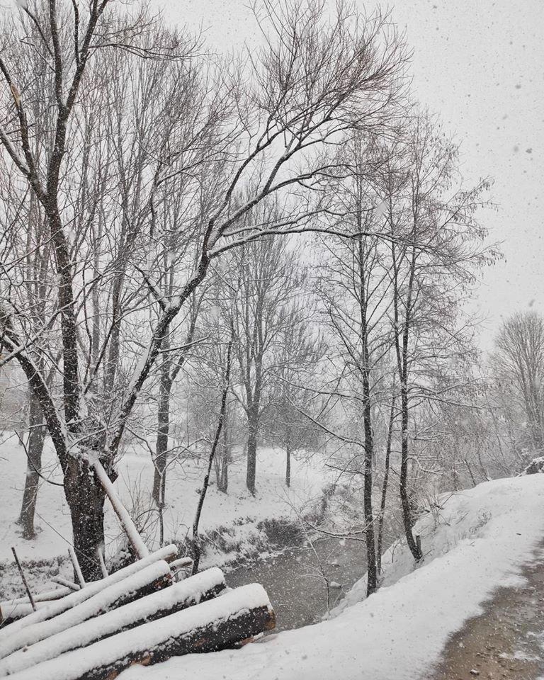 Зима не відпускає: на Рахівщині падає сніг (ФОТО), фото-2