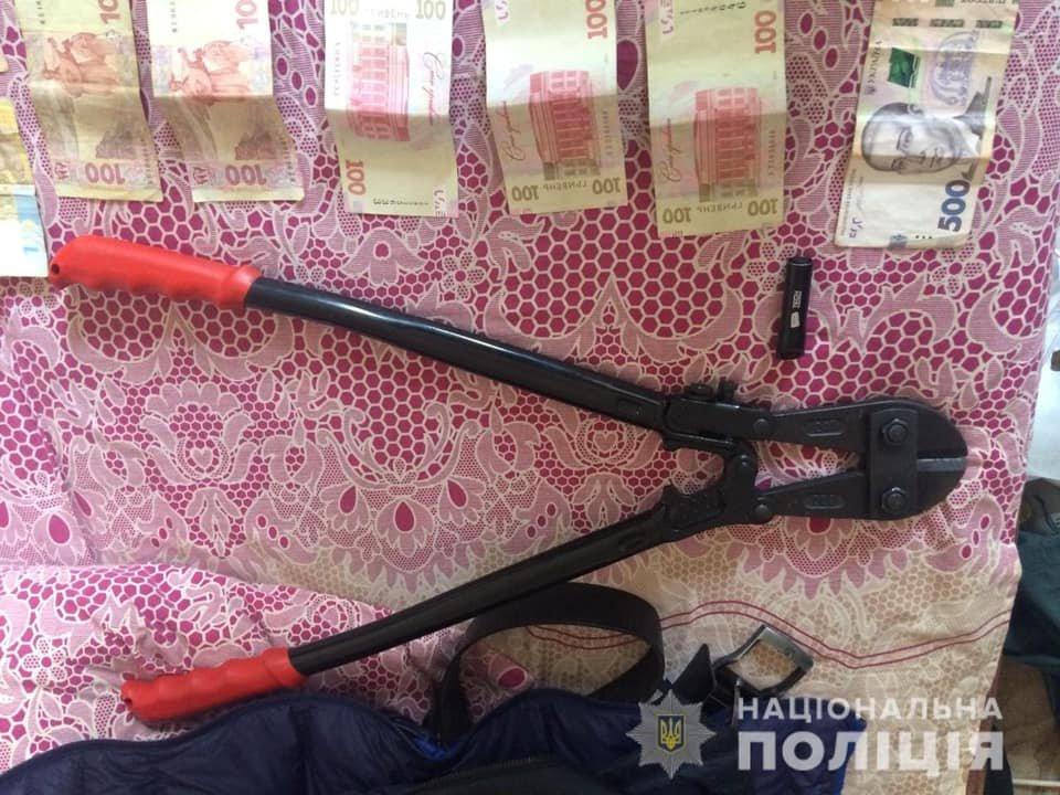 Проникли до будинку, вкрали готівку та елітний Mercedes GLS: на Закарпатті сталося гучне пограбування (ФОТО), фото-6