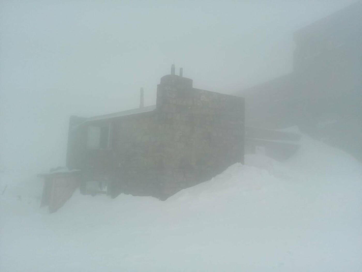 Літо не поспішає: 4 червня у Карпатах лежить сніг, температура на рівні нуля (ФОТО), фото-1