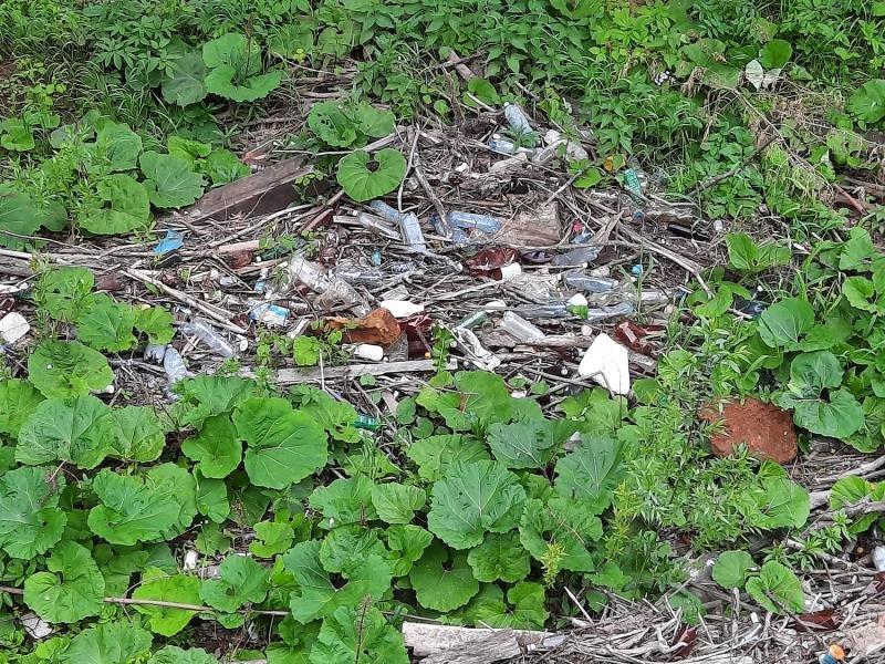 Береги ще однієї закарпатської річки всипані сміттям (ФОТО) , фото-3