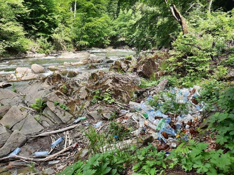 Береги ще однієї закарпатської річки всипані сміттям (ФОТО) , фото-1