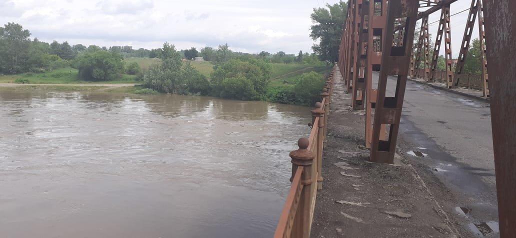 Стрибнув з мосту: угорські прикордонники витягли з Тиси чоловіка, якого віднесло течією (ФОТО), фото-1