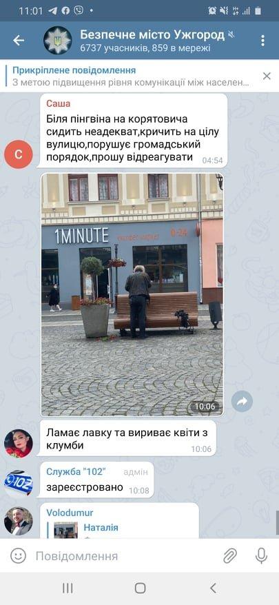 Вириває квіти та ламає лавиці: у соцмережах повідомляють про вандала в центрі Ужгорода (ФОТО), фото-1
