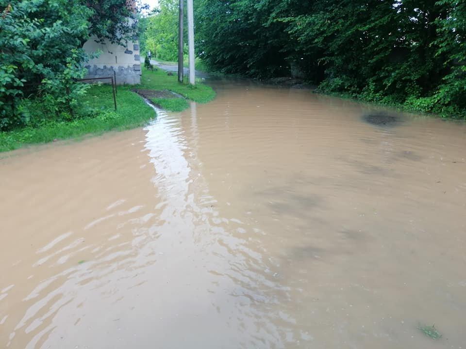 Підтоплені будинки та вулиці: ще одне місто Закарпаття постраждало від негоди (ФОТО), фото-4