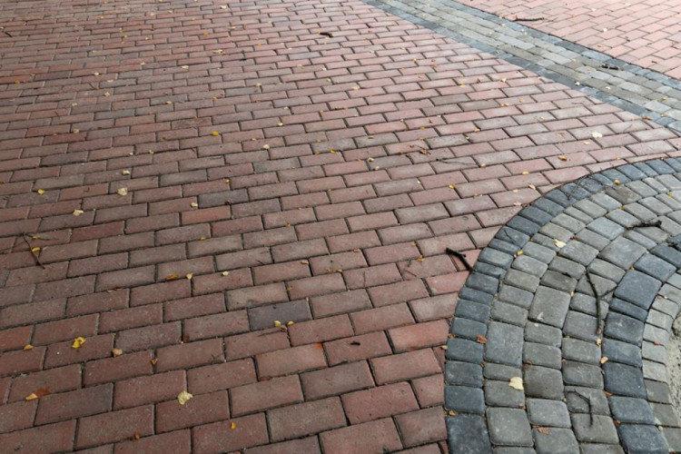 В Ужгороді на площі Петефі триває ремонт: облаштовують пішохідну зону (ФОТОФАКТ), фото-2