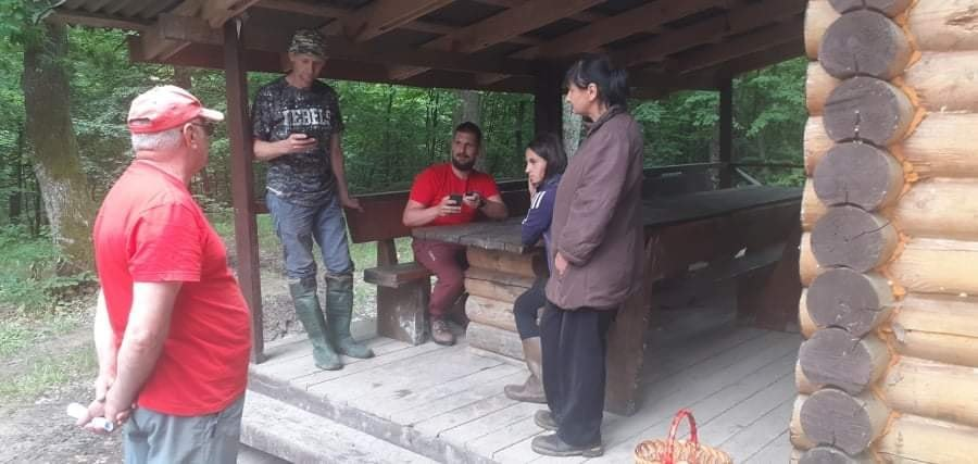 На Ужгородщині дві жінки пішли по гриби та загубилися в лісі (ФОТО), фото-1