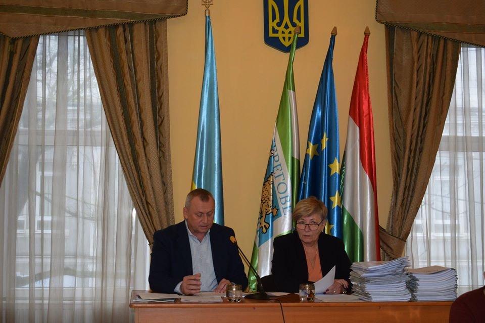 Коронавірус у Берегівській міській раді: лікується секретарка , фото-1