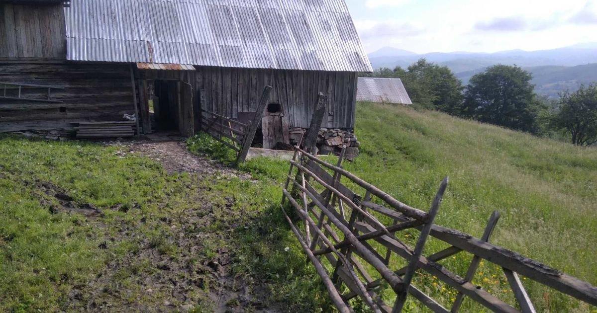 Через загрозу зсуву ґрунту на Закарпатті евакуювали людей та худобу (ФОТО), фото-1