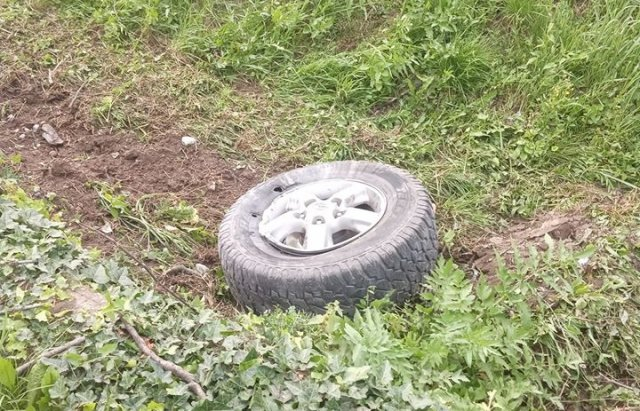 ДТП на Закарпатті: позашляховик заїхав в дерево (ФОТО), фото-2