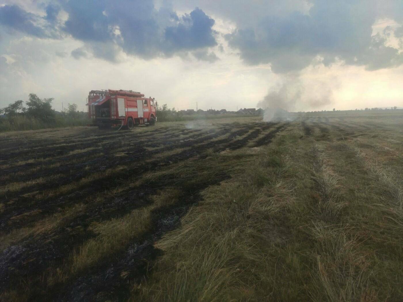 На Закарпатті внаслідок пожежі знищено сіно на площі 1 Га (ФОТО), фото-2
