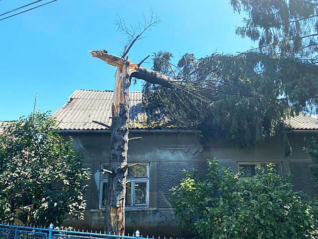 Пошкоджено автомобіль та будинок: на Закарпатті рятувальники ліквідовували наслідки падіння дерев, фото-2