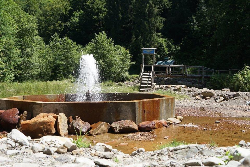 Єдиний в Україні гейзер мінералки облаштували закарпатські лісники (ФОТО), фото-2