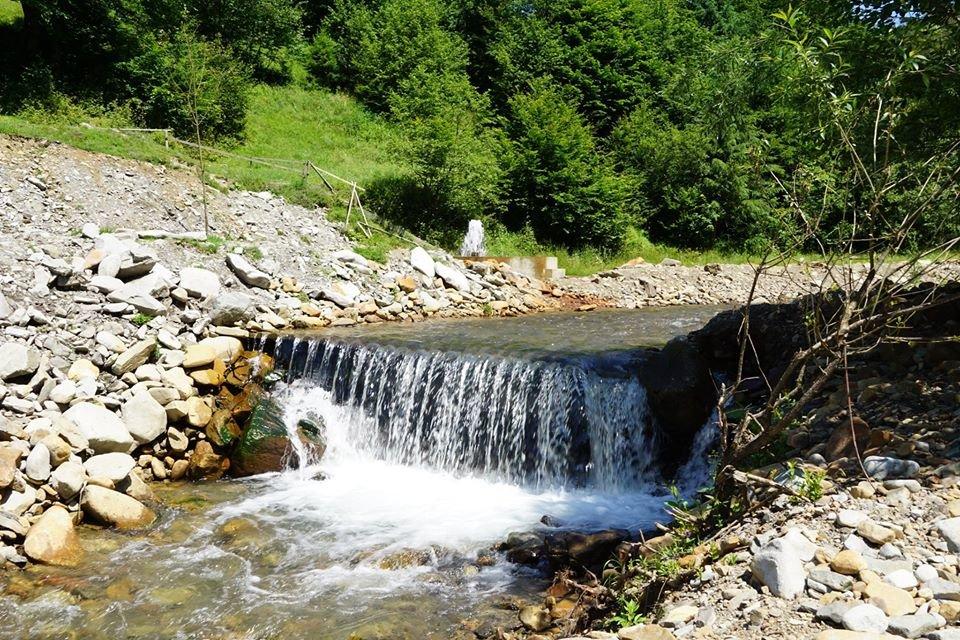 Єдиний в Україні гейзер мінералки облаштували закарпатські лісники (ФОТО), фото-3