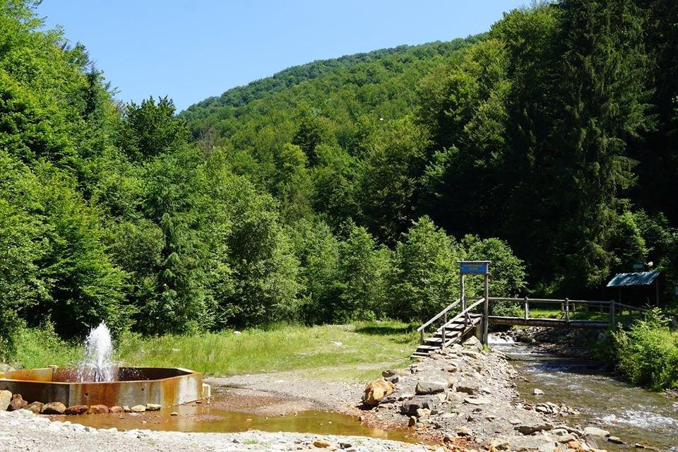 Єдиний в Україні гейзер мінералки облаштували закарпатські лісники (ФОТО), фото-4