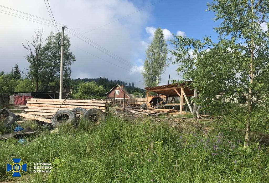 На Закарпатті незаконно нарубали дерева на 10 мільйонів гривень (ФОТО), фото-1