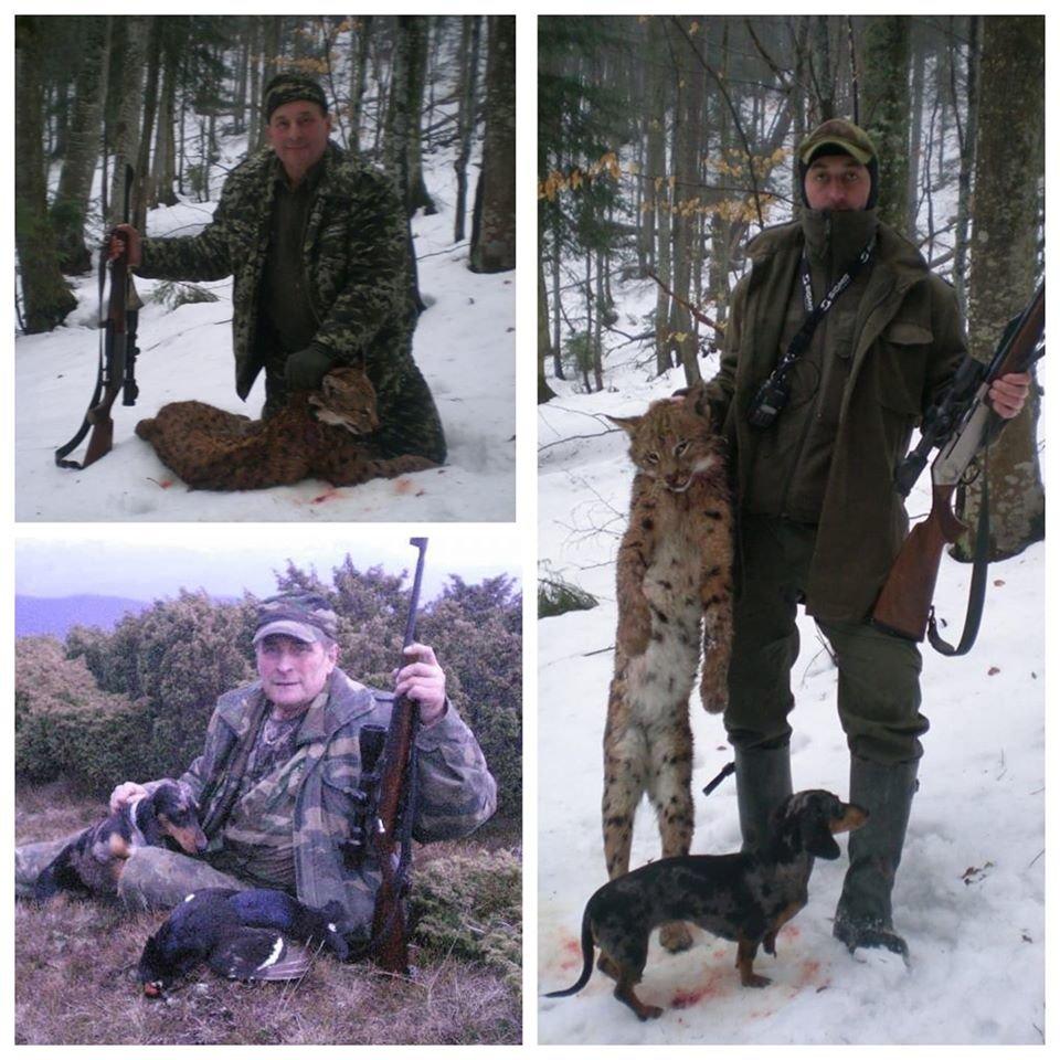 Заступником директора Ясінянського лісгоспу може стати браконьєр , фото-1