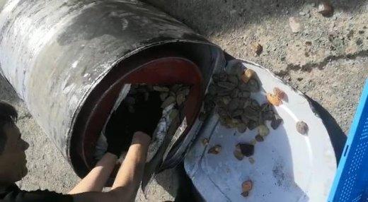 На Закарпатті прикордонники у бензобаках вантажівки виявили  понад 3 центнери бурштину (ФОТО, ВІДЕО), фото-4
