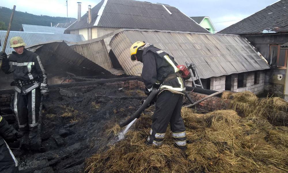 Рятувальники приборкували пожежу на Мукачівщині - горіли дві надвірні споруди (ФОТО), фото-2