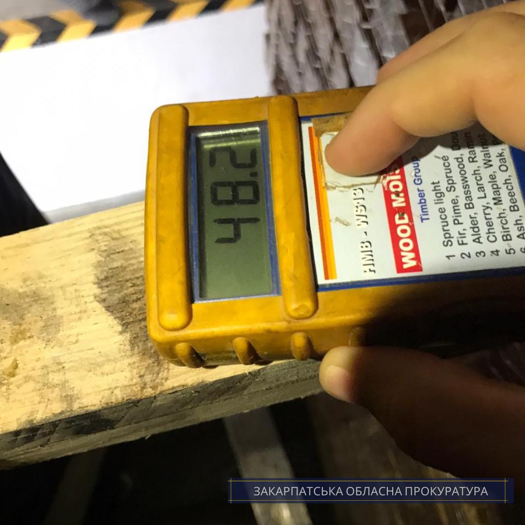 Попереджено спробу закарпатця вивезти цінну деревину до країн ЄС (ФОТО), фото-3